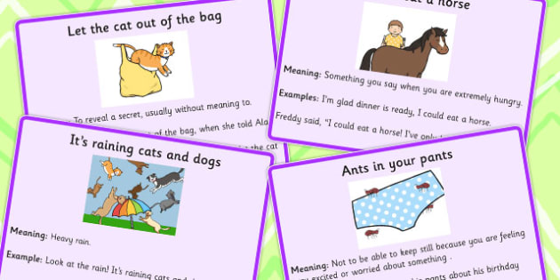 Animal Idioms Meaning Cards Animal Idioms Meaning Cards