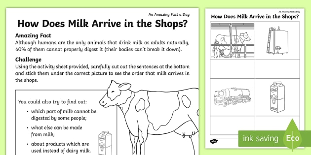 How Does Milk Arrive in the Shops? Worksheet / Worksheet ...