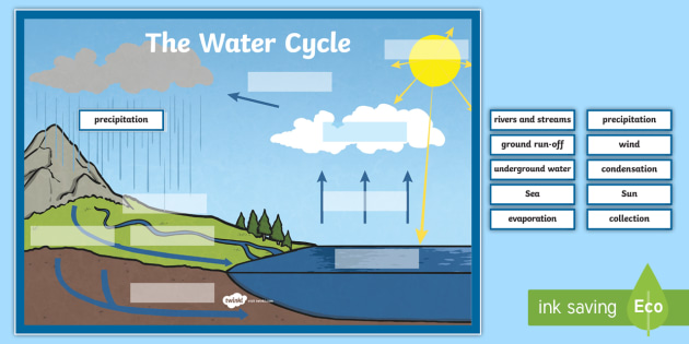 The Water Cycle Large Display Labeling Activity Condensation