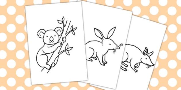 Australian Animals Colouring sheets - animal, colours, sheet