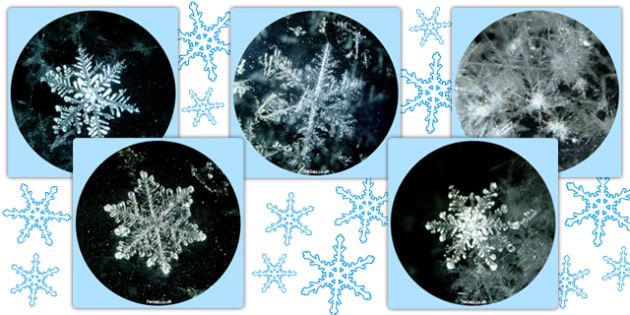 Snowflake Display Photo Cut-Outs - snowflake, winter, cut out