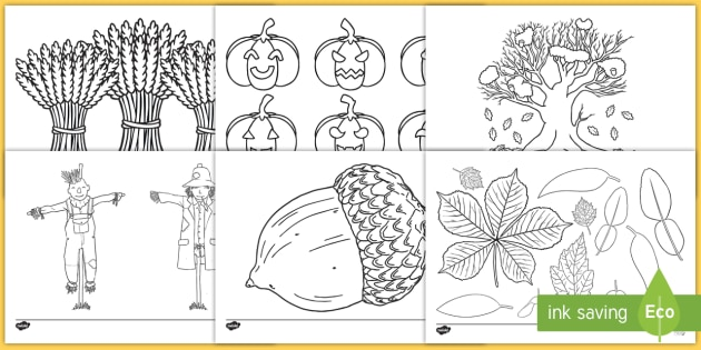 Autumn Colouring Sheets - Autumn, colouring poster, colouring, fine motor skills, activity, harvest, harvest festival, fruit, apple, pear, orange, wheat, bread, grain, leaves, conker
