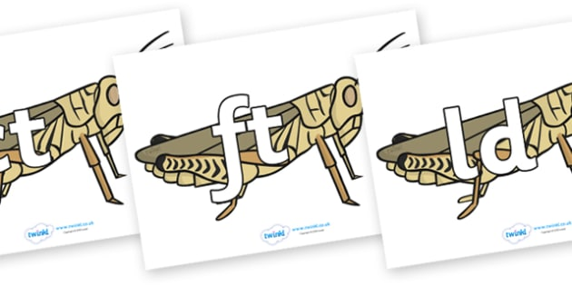 Final Letter Blends on Grasshoppers - Final Letters, final letter, letter blend, letter blends, consonant, consonants, digraph, trigraph, literacy, alphabet, letters, foundation stage literacy