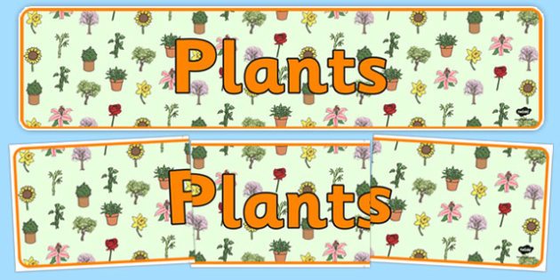 Plants Display Banner - plants banner, plants, green plants, living things, plants display, general plants display, plants display header, ks2 science