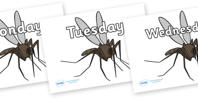 Days of the Week on Mosquitos - Days of the Week, Weeks poster, week, display, poster, frieze, Days, Day, Monday, Tuesday, Wednesday, Thursday, Friday, Saturday, Sunday
