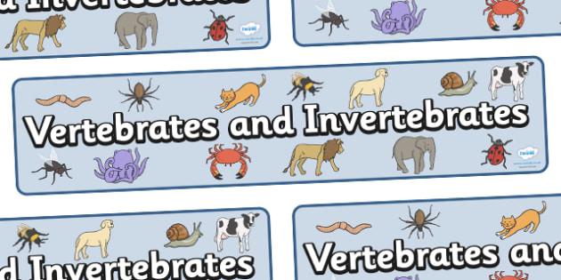 Vertebrates And Invertebrates Display Banner - vertebrate, invertebrate, banner, display, poster, sign, activity, vertebrate or invertebrate, game, matching, animals, animal, types, different