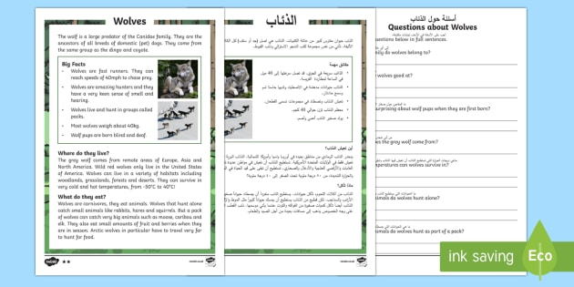 wolves differentiated reading comprehension activity arabic english ks1. Black Bedroom Furniture Sets. Home Design Ideas