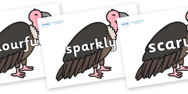 Wow Words on Vultures - Wow words, adjectives, VCOP, describing, Wow, display, poster, wow display, tasty, scary, ugly, beautiful, colourful sharp, bouncy