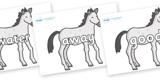 Next 200 Common Words on Ponies - Next 200 Common Words on  - DfES Letters and Sounds, Letters and Sounds, Letters and sounds words, Common words, 200 common words