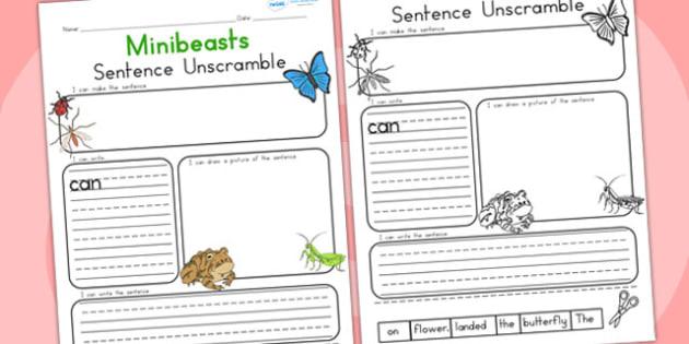 Minibeast Sentence Unscramble - mini beasts, literacy, sentences
