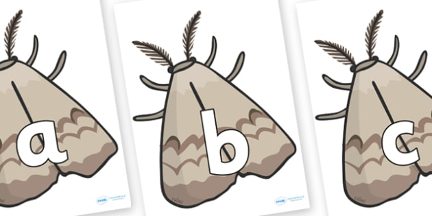 Phoneme Set on Insects - Phoneme set, phonemes, phoneme, Letters and Sounds, DfES, display, Phase 1, Phase 2, Phase 3, Phase 5, Foundation, Literacy