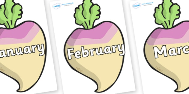 Months of the Year on Turnips - Months of the Year, Months poster, Months display, display, poster, frieze, Months, month, January, February, March, April, May, June, July, August, September