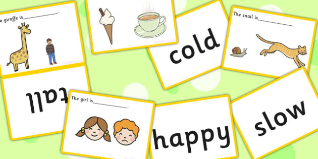 Complete The Sentence Basic Concepts Matching Cards - SEN, visual aids