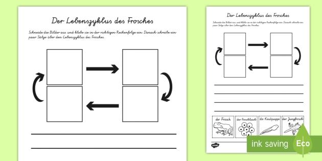 Der Lebenszyklus des Frosches Schreibübung Arbeitsblatt