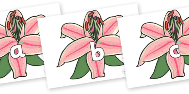 Phase 2 Phonemes on Lilies - Phonemes, phoneme, Phase 2, Phase two, Foundation, Literacy, Letters and Sounds, DfES, display