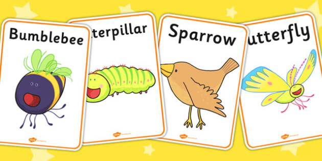 Display Posters to Support Teaching on The Crunching Munching Caterpillar - posters