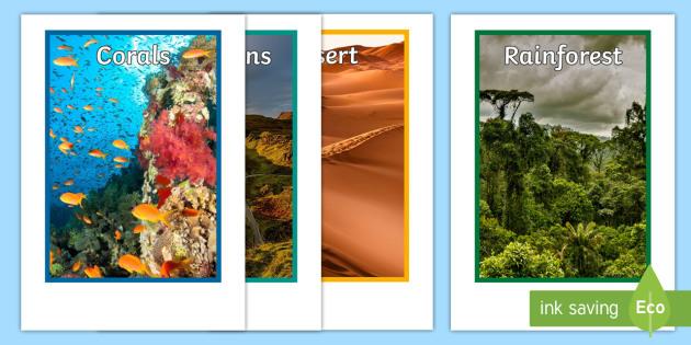 animal habitats display photo cutouts photos animals display