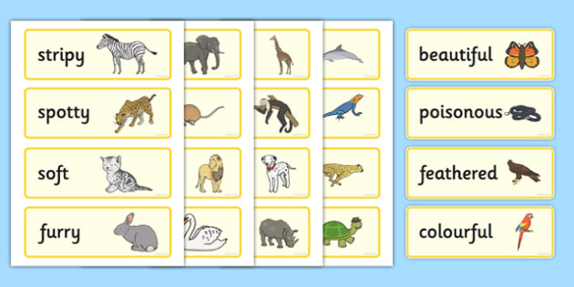 Animal Adjectives Word Cards Animal Adjective Movement