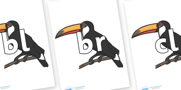Initial Letter Blends on Toucans - Initial Letters, initial letter, letter blend, letter blends, consonant, consonants, digraph, trigraph, literacy, alphabet, letters, foundation stage literacy