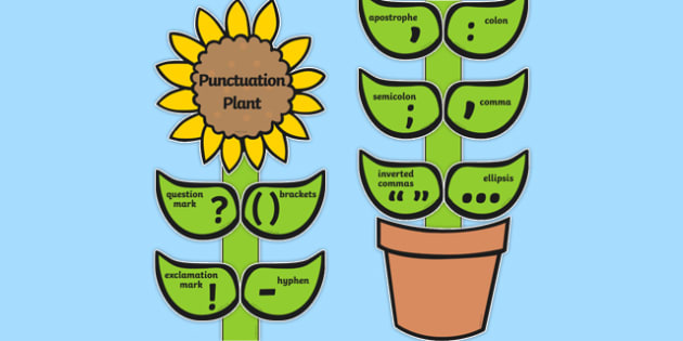 Punctuation Flower Display - punctuation, punctuation display, classroom display, themed display, visual aid, punctuation aid, flower display, display