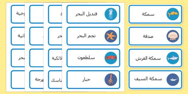 بطاقات كلمات عن تحت البحر عربي