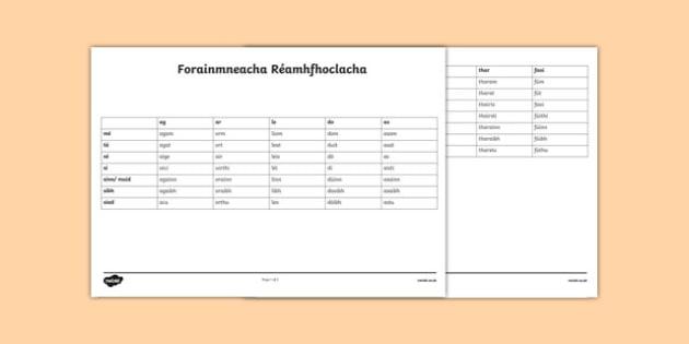 Irish Gaeilge Forainmneacha Réamhfhoclacha Editable Notes-Irish