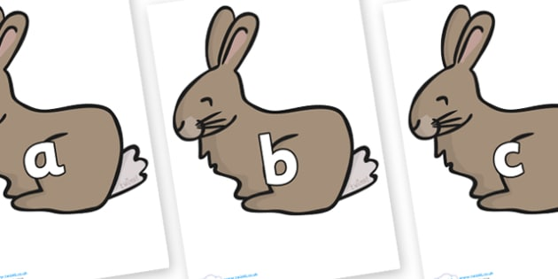 Phase 2 Phonemes on Rabbit - Phonemes, phoneme, Phase 2, Phase two, Foundation, Literacy, Letters and Sounds, DfES, display