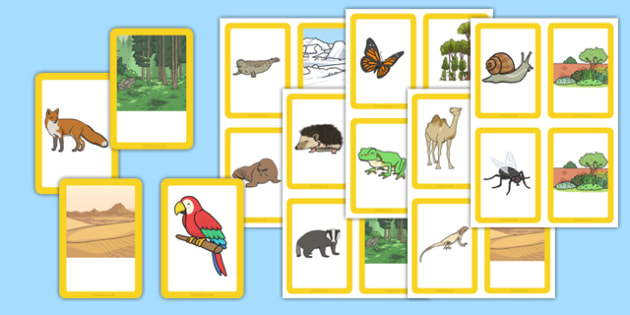 Animals and their Habitats Matching Cards - animals, habitats