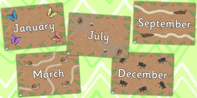 Minibeast Themed Months of the Year Posters - classroom display