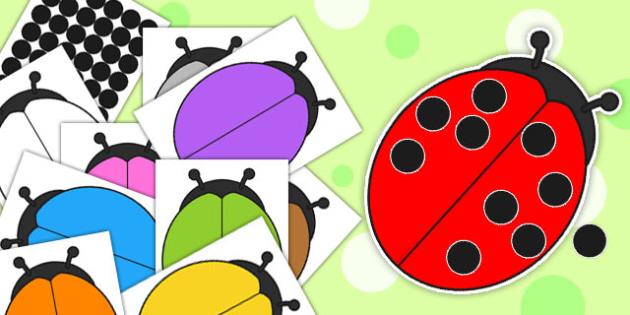 Editable Ladybird and Spots Cut Outs - edit, activity, ladybirds