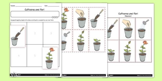Cum să cultivăm o plantă? - Fișă de lucru