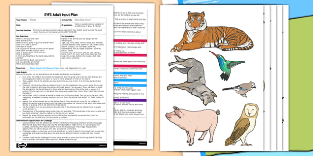 EYFS Where Does it Live Game Adult Input Plan and Resource Pack - EYFS, Early Years planning, adult led, animals, living things, sorting, Understanding the World.