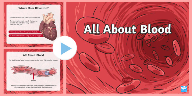All About Blood PowerPoint - The Human Body, anatomy, body, blood, bleeding, vascular, heart, white blood cells, red blood cells