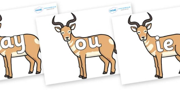 Phase 5 Phonemes on Antelopes - Phonemes, phoneme, Phase 5, Phase five, Foundation, Literacy, Letters and Sounds, DfES, display