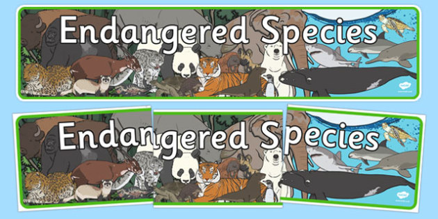 Endangered Species Display Banner - endangered species, display banner, display, banner