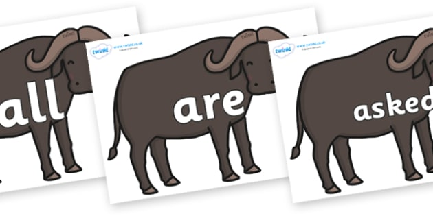 Tricky Words on Buffalos - Tricky words, DfES Letters and Sounds, Letters and sounds, display, words