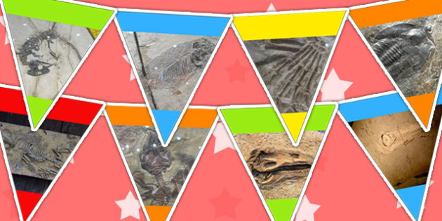 Dinosaur Fossils Photo Bunting - dinosaurs, bunting, display