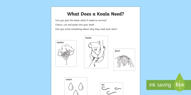 What Does A Koala Need? Activity Sheet-Australia