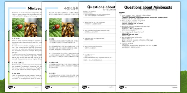 Minibeasts Differentiated Reading Comprehension Activity Mandarin Chinese Translation - mandarin chinese, Reading, comprehension, questions, ask, answer, minibeasts, habitat, insects, invertebrates, shell, fly, wings, legs, pollen, crawl, bumblebee,