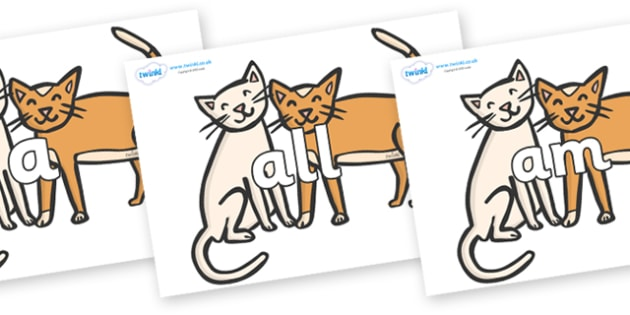 Foundation Stage 2 Keywords on Cats - FS2, CLL, keywords, Communication language and literacy,  Display, Key words, high frequency words, foundation stage literacy, DfES Letters and Sounds, Letters and Sounds, spelling