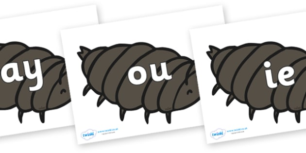 Phase 5 Phonemes on Woodlice - Phonemes, phoneme, Phase 5, Phase five, Foundation, Literacy, Letters and Sounds, DfES, display