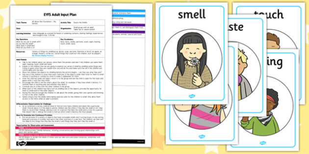 Guess the Smells EYFS Adult Input Plan and Resource Pack