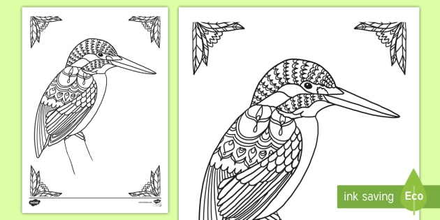 Charming Kingfisher Mindfulness Colouring Page   New Zealand Mindfulness