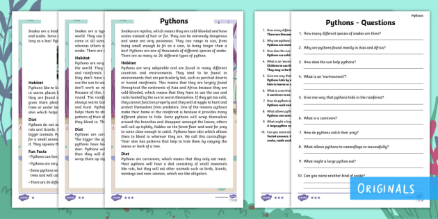 Year 2 Pythons Differentiated Reading Comprehension Activity - python, snake, coil, tree, prey, meat, carnivore, pounce, grassland, desert, rainforest, ask, answer