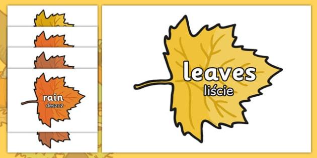 Autumn Words on Leaves Polish Translation - polish, autumn, words, leaves