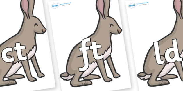 Final Letter Blends on Hares - Final Letters, final letter, letter blend, letter blends, consonant, consonants, digraph, trigraph, literacy, alphabet, letters, foundation stage literacy