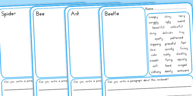 Minibeasts Description Draw and Write Writing Frames - australia