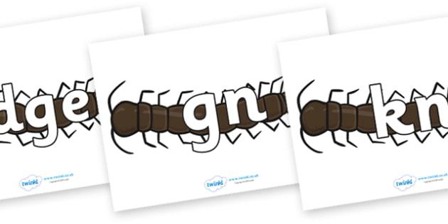 Silent Letters on Centipedes - Silent Letters, silent letter, letter blend, consonant, consonants, digraph, trigraph, A-Z letters, literacy, alphabet, letters, alternative sounds