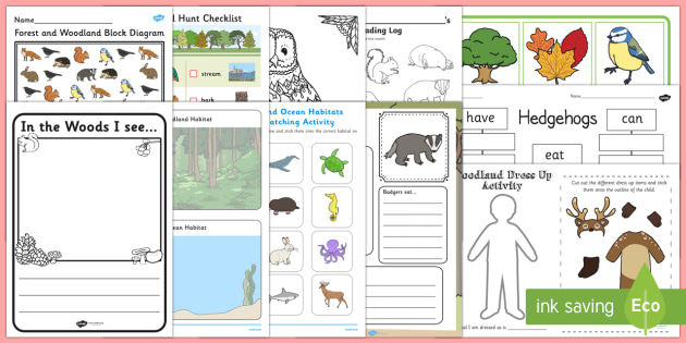 Top Ten Forest and Woodland  Activity Pack - forest, wood, woodland, trees, woods,