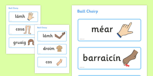 Baill Choirp Topic Word Cards Gaeilge - gaeilge, parts, body, topic, word cards
